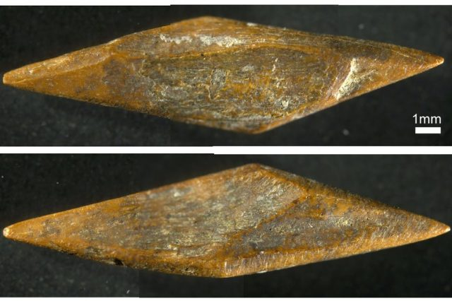 An image of a small arrowhead discovered at the Fa-Hien Lena cave. Image Credit: M. C. Langley.