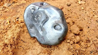 An image of the bright,. metallic meteorite that crashed in India. Image Credit: Twitter.