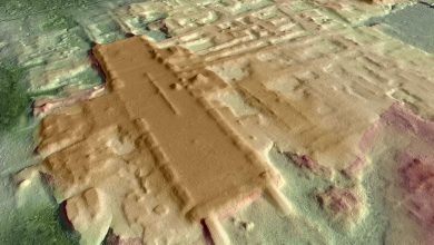 Photo of Complex Ancient Civilizations: Largest Most Ancient Maya Monument Discovered to Date