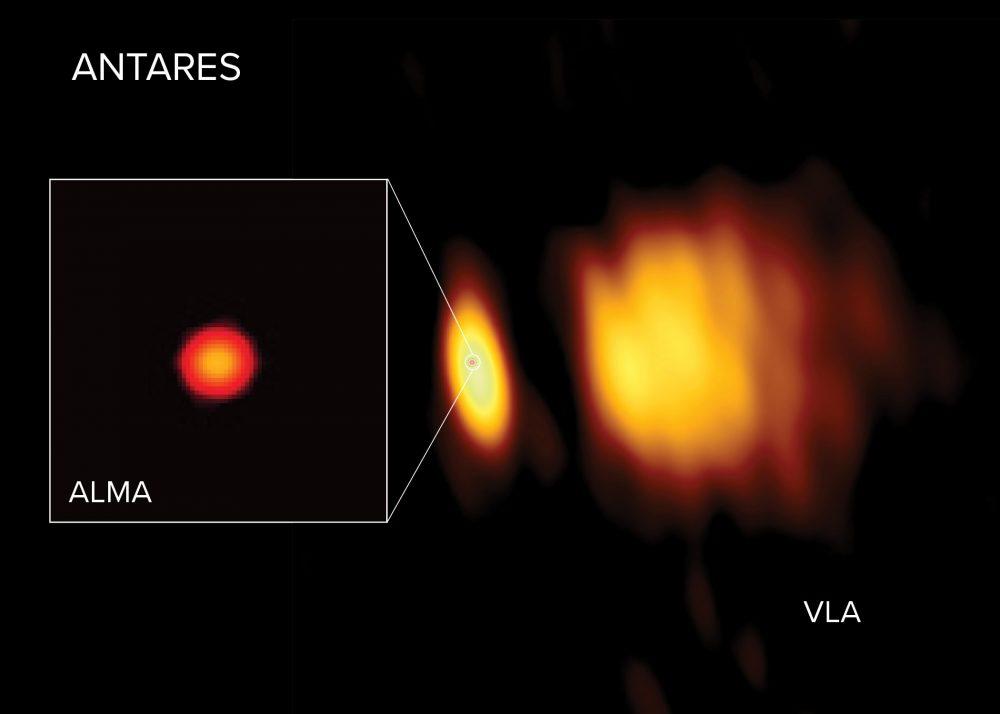 Radio images of Antares with ALMA and the VLA. Image Credit: ALMA (ESO/NAOJ/NRAO), E. O'Gorman; NRAO/AUI/NSF, S. Dagnello.