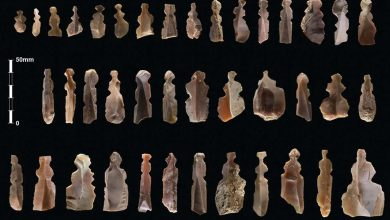 Photo of Mysterious 10,000-Year-Old Ancient Figurines Baffle Experts