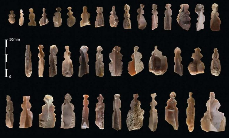 An image showing the numerous ancient figurines discovered by archaeologists. Image Credit: Kharaysin archaeological team.