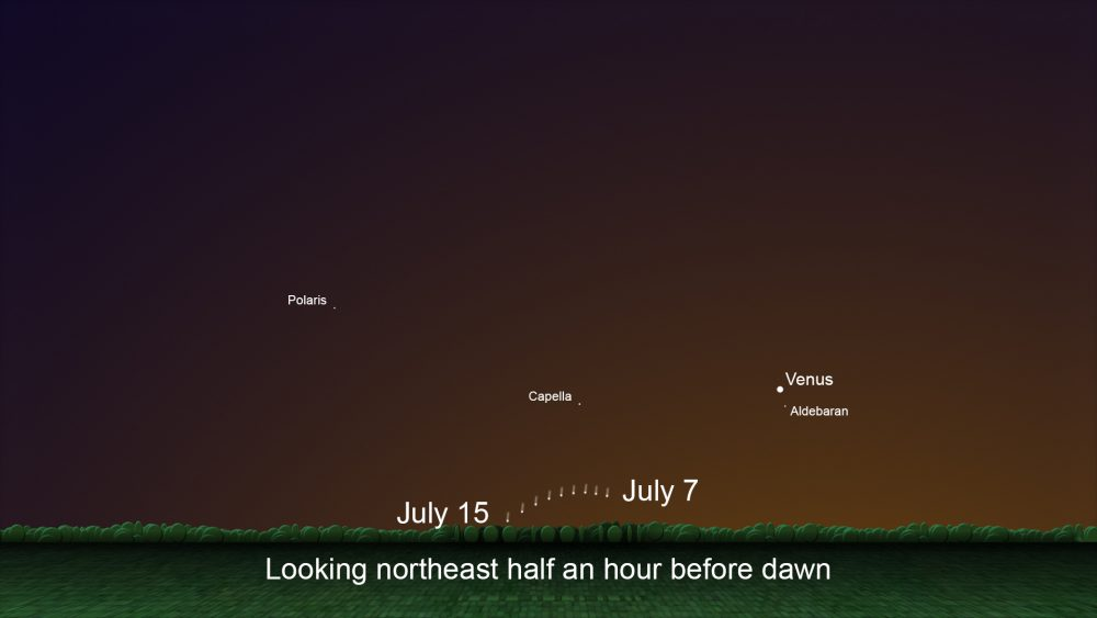 A skychart showing the location of Comet C/2020 F3 just before dawn, July 7 through 15. Image Credit: NASA/JPL-Caltech.