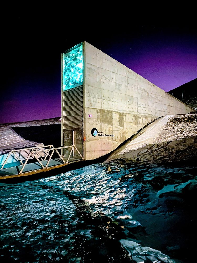 Entrance to the Seed Vault at dusk, highlighting its illuminated artwork. By Subiet - Own work, CC BY-SA 4.0.