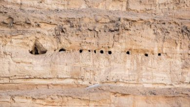 Photo of 2,000-Year-Old Rock-Cut Chambers Discovered on a Cliff Near Abydos Puzzle Experts