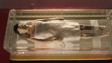 Photo of Inexplicable Yet Intriguing Facts About China's 2000-Year-Old Mummy