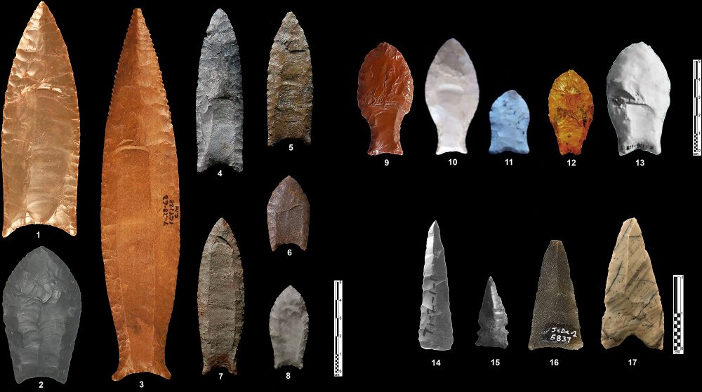 An image showing various types of North and South American fluted points. Image Credit: Rémy Crassard et al. 2020. PLOS ONE.