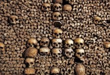Photo of 11 Interesting Facts About the Catacombs of Paris You Probably Didn't Know