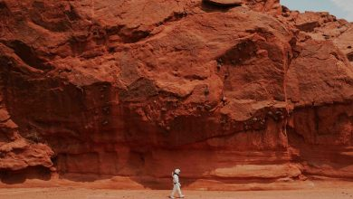 Photo of Life On Mars: What Mankind Needs To Do In Order To Live On The Red Planet