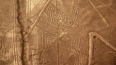 Photo of 10 Curiosities You Probably Didn't Know About Peru's 2,000-Year-Old Nazca Lines
