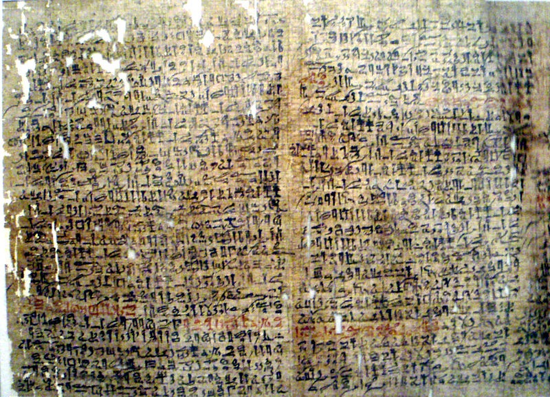 A couple of Sheets from the Westcar Papyrus.