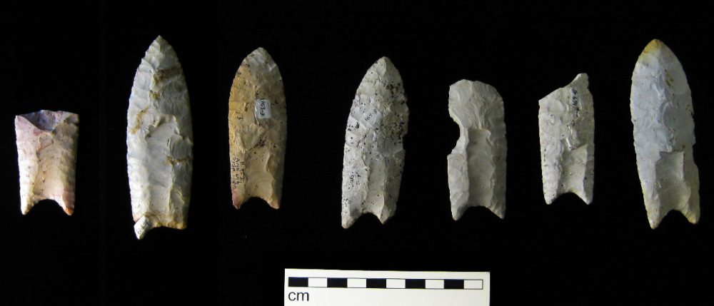 Clovis points from the Rummells-Maske Cache Site in Iowa. Source: Wikipedia