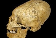 Photo of 10 Things You Probably Didn't Know About the Ancient Paracas Skulls