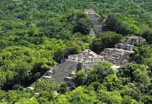 Mayan Ruins in the ancient site of Calakmul. Credit: All Mexico 365
