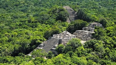 Photo of Study Reveals Ancient Maya Civilization High Degree of Technological Advancement