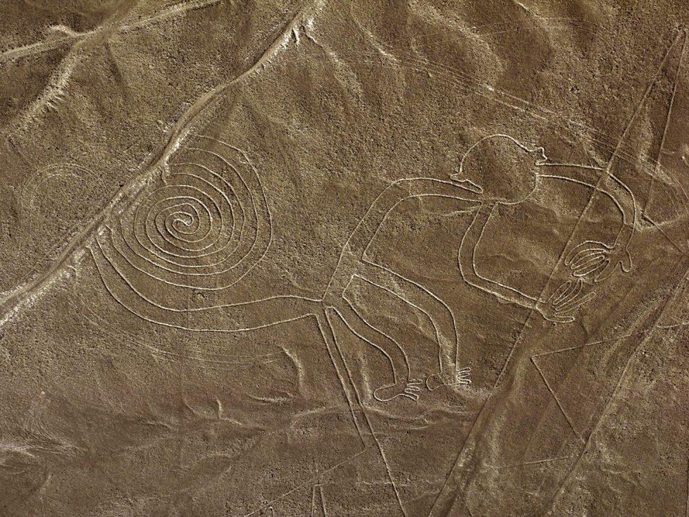 The famous monkey geoglyphs.