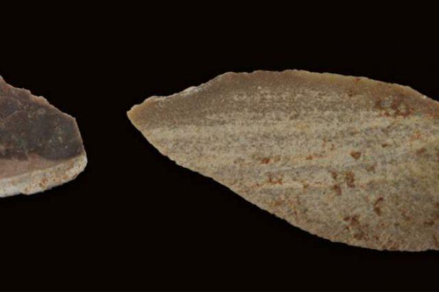 An example of a point-flake blade. Image Credit: Weizmann Wonder Wander.