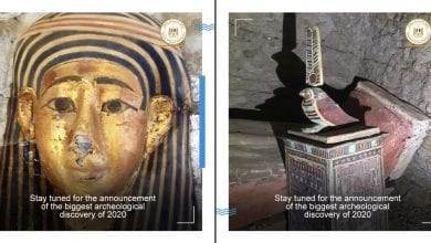 A collage showing two discoveries recently made by archeologists at Saqqara. Image Credit: Egyptian Ministry of Tourism and Antiquities.