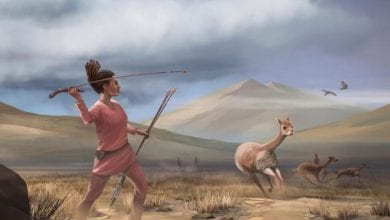 Recent discoveries of graves of female hunters could change the perception that only men hunted in ancient times. Credit: Matthew Verdolivo / UC Davis IET Academic Technology Services