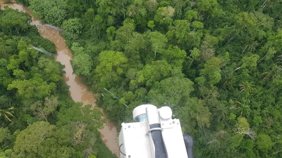 Photograph of the Amazon forest from a helicopter. Credit: University of Exeter