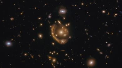 We are fortunate to see yet another one of Hubble's spectacular images of rare cosmic events, this time of the largest Einstein Ring known to science. Credit: ESA/Hubble & NASA, S. Jha; Acknowledgment: L. Shatz