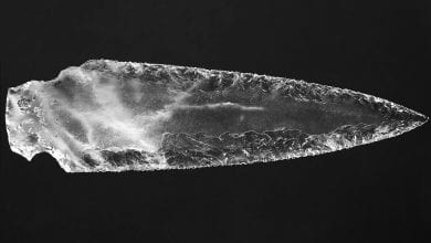 The crystal dagger was found in a separate chamber from all other artifacts. Credit: Miguel Angel Blanco de la Rubia