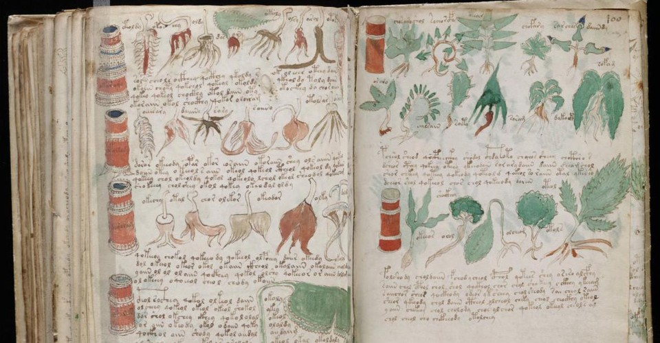 "Pages from the Voynich manuscript showing a variety of plant and tree species. Many of the plants in the ""book"" do not resemble any of the species we have on Earth. Credit: The Atlantic"