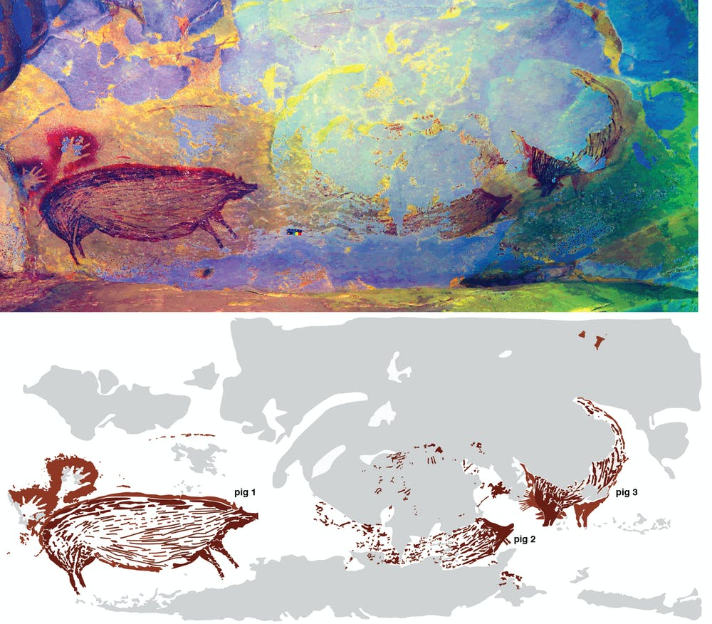 DStretch enhancement on the top image reveals the cave paintings in greater detail. On the bottom, you see a clearer example of the tracing of the paintings. Credit: Adhi Agus Oktaviana