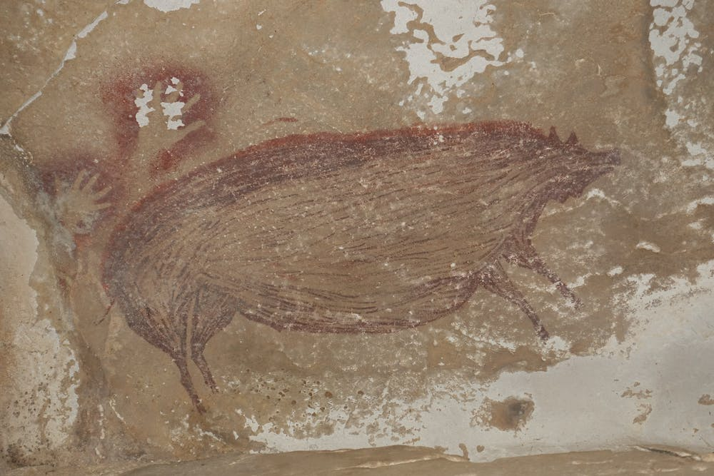 World's oldest animal cave painting of a warty pig. Credit: Maxime Aubert