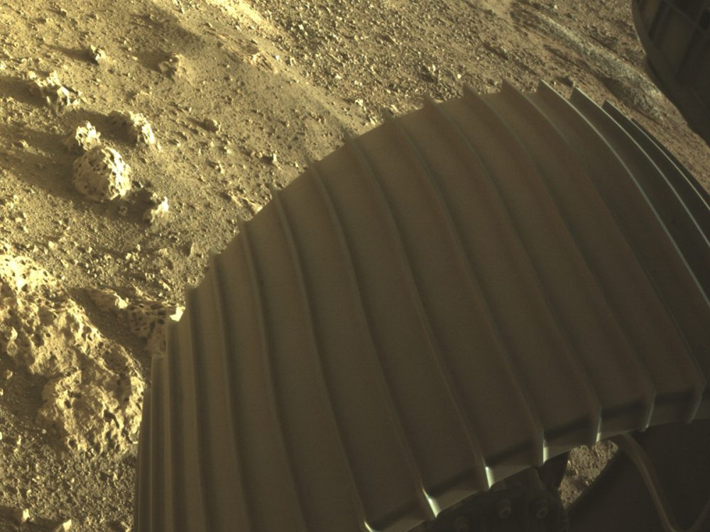 In this image, we see one of Perseverance's six wheels, snapped by one of the Hazard Cameras aboard the rover. Credit: NASA/JPL-Caltech