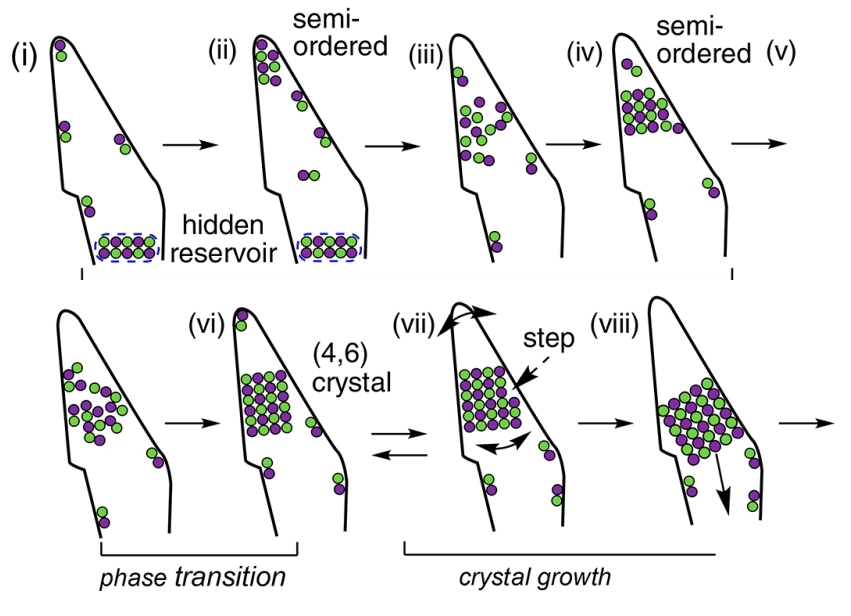 Scheme of the formation of a crystal from a nucleus and the preceding semi-ordered state. Credit: Nakamuro et al. / Journal of the American Chemical Society, 2021