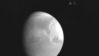 The first image of Mars taken by the Chinese mission Tianwen-1 days before entering the orbit. Credit: CNSA