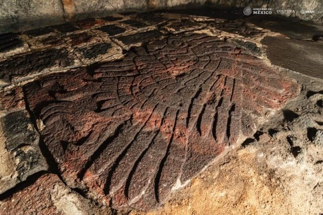 The newly found bas-relief of a golden eagle is the largest out of 67 such drawings discovered at Templo Mayor. Credit: Mirsa Islas / INAH