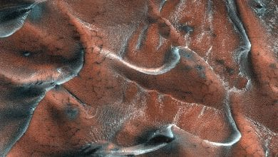 This image of sand dunes presents a 5-kilometer diameter field within a frosted crater in northern Mars. You can see a variety of dunes with different patterns and textures. Credit: NASA/JPL/University of Arizona