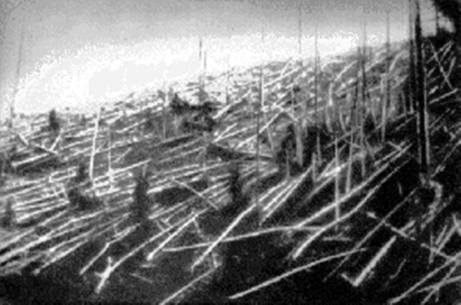 An old image from 1927 showing the fallen trees in the area of the Tunguska explosion. Credit: Wikimedia Commons
