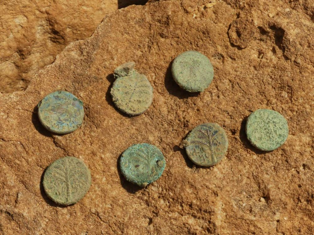 Coins found in the caves. Credit: Ofer Sion / Israel Antiquities Authority