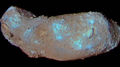 Scientists have discovered water and organic matter in a grain of dust from asteroid Itokawa, brought to Earth by the Hayabusa-1 mission in 2010. Credit: JAXA