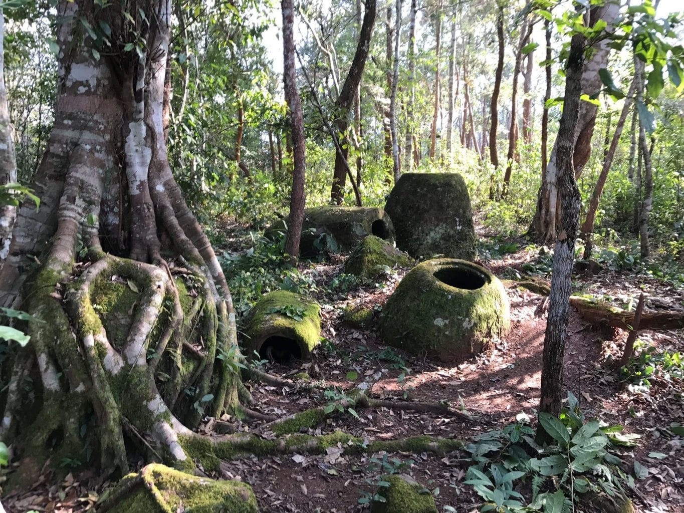 A view of site 52 which is one of the many megalithic sites in Laos. Credit: Plain of Jars Archaeological Research Project