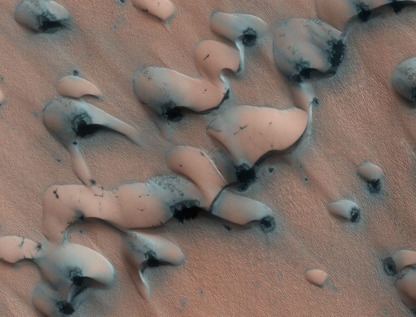 Here is an image of Barchan dunes from the Martian north pole which are usually created by winds coming from a single direction. Credit: NASA/JPL-Caltech/Univ. of Arizona