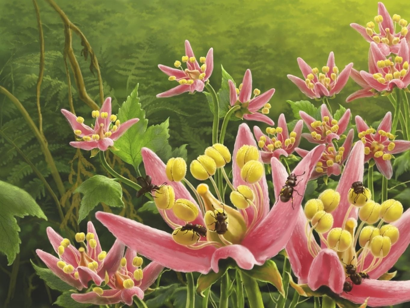 Ecological reconstruction presenting Pelretes vivificus on flowers. Credit: Jie Sun