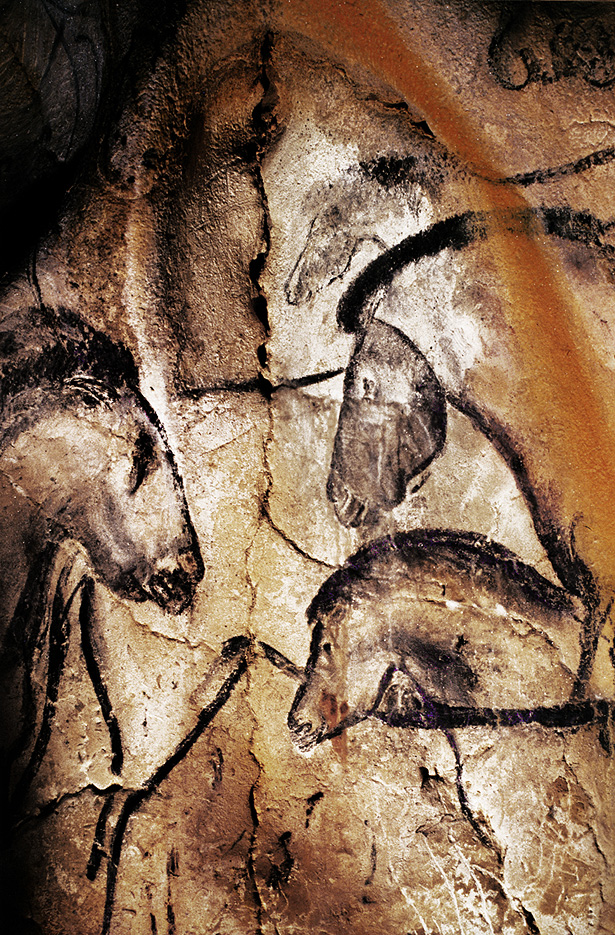 The rock paintings in the Chauvet Cave are some of the most intricate and detailed examples of prehistoric art in the world. Experts have identified at least 13 different animal species from the drawings. Credit: Bradshaw Foundation