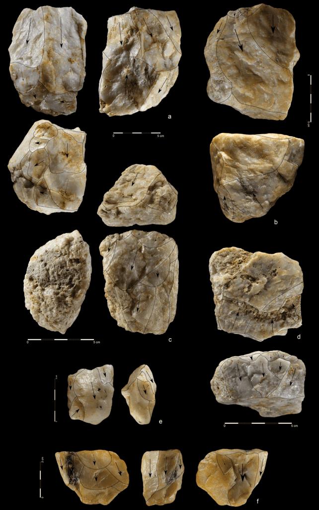 Quartzite unidirectional cores from the mine. Credit: Mirosław Masojć
