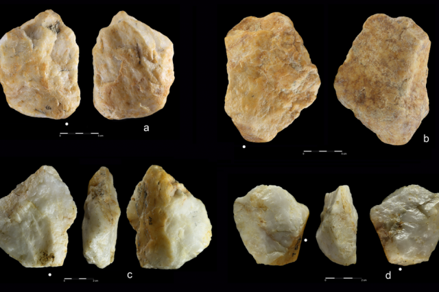 Archaeologists unearthed hundred of ancient tools in an abandoned Saharan mine dated to about 700,000 years ago. On the image, you see Cortex flakes (a,b,c) and a Dosrally plain flake (d). Credit: Miroslaw Masojc
