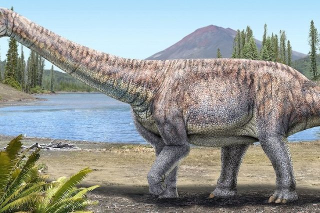 Artist's impression of the new dinosaur species based on the description given by paleontologists. Credit: Reuters / National Museum of National History
