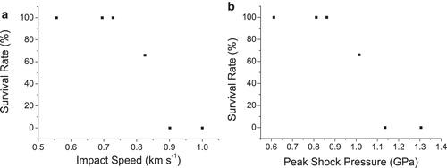 (a) dependence of the survival rate of tardigrades on the speed of the shot; (b) dependence of the survival rate of tardigrades on peak shock pressure. Credit: Alejandra Traspas et. al. / Astrobiology