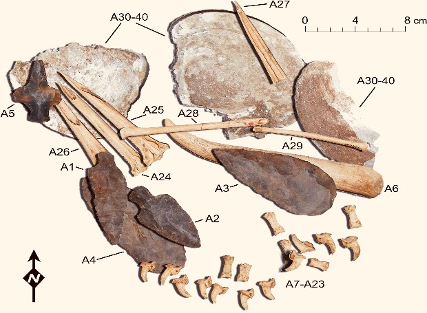 Accumulation of tools from the Fernvale site, some of which were used by ancient Native Americans for tattoos. Credit: A. Deter-Wolf et al. / Journal of Archaeological Science: Reports, 2021