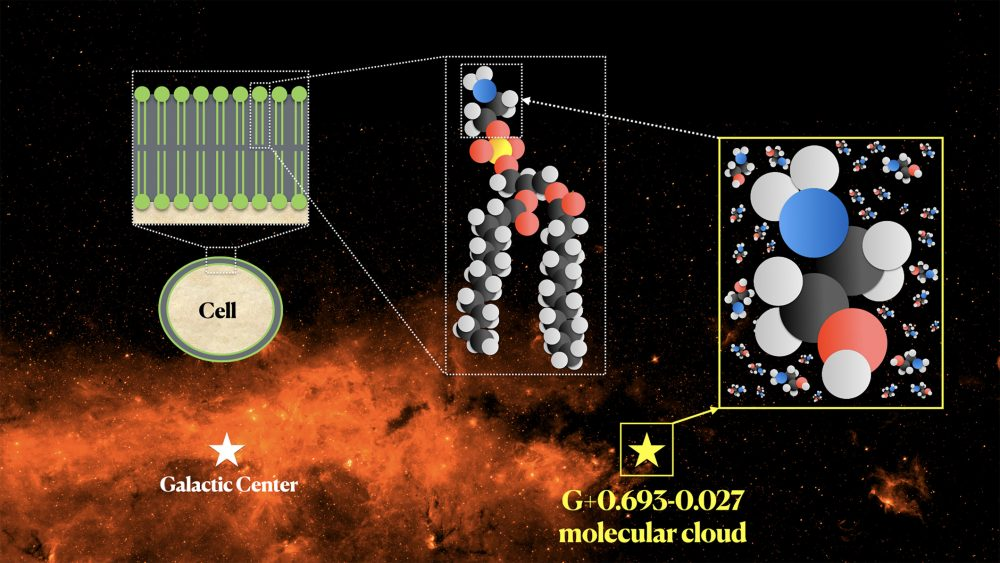 The molecular cloud is difficult to observe directly but scientists have continuously been discovering different building blocks of life like ethanolamine. Credit: Background image credit: NASA/JPL-Caltech. Composite image credit: Víctor M. Rivilla and Carlos Briones.