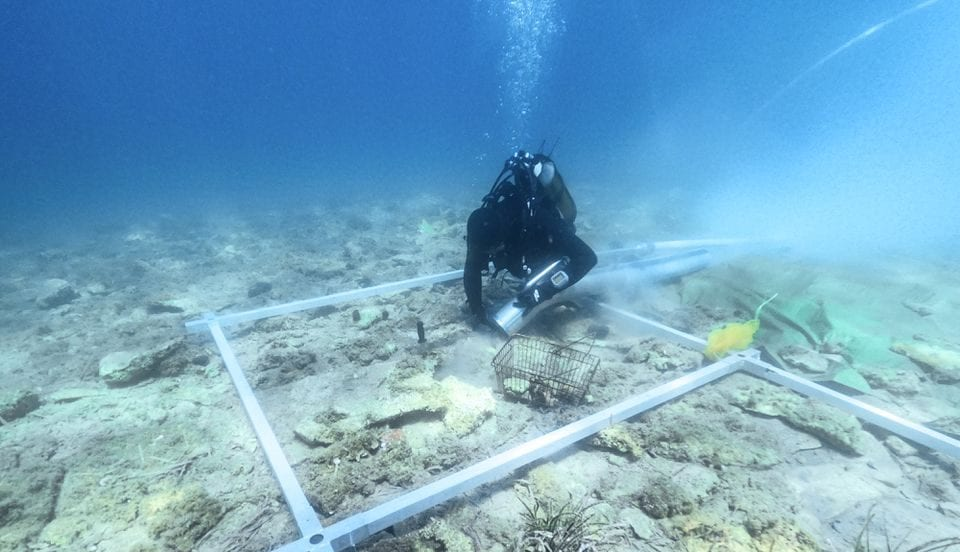Archaeologist diver excavating the underwater neolithic settlement in Croatia. Credit: Reuters/