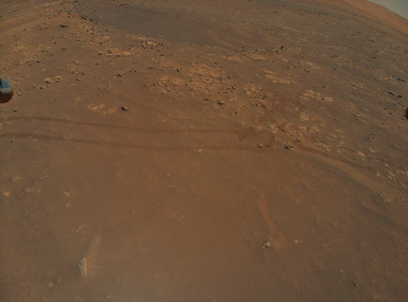 Rover tracks from the Perseverance rover captured during the ninth flight of the Ingenuity Mars Helicopter. Credit: NASA/JPL-Caltech
