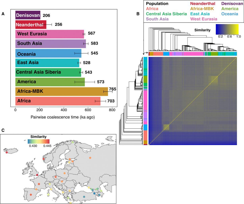 Performance of SARGE on SGDP and archaic hominin dataset. Credit: Nathan Schaefer et al. / Science Advances, 2021